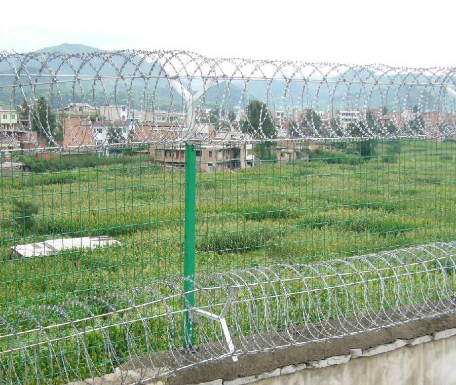 Coils Razor Wire on Top of Welded Mesh Fence