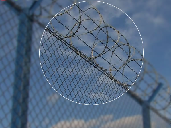Razor Barbed Wire Zinc Coated